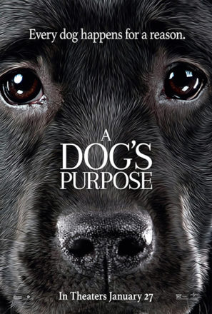 A Dog's Purpose (2017) Movie Poster
